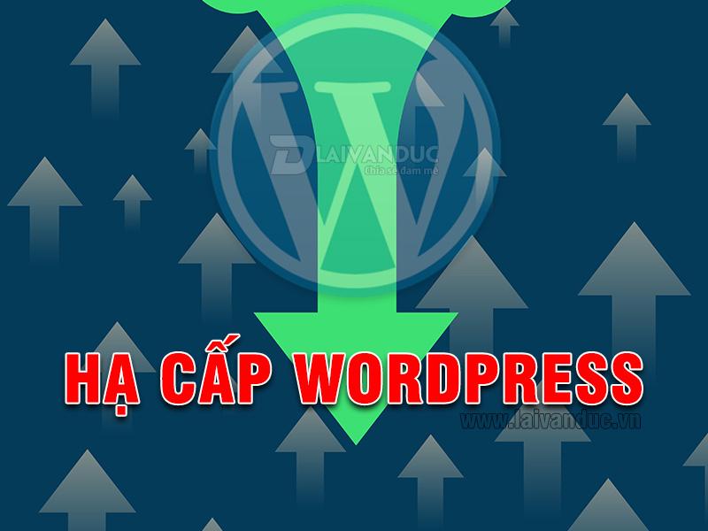 Hạ Cấp WordPress xuống phiên bản thấp hơn